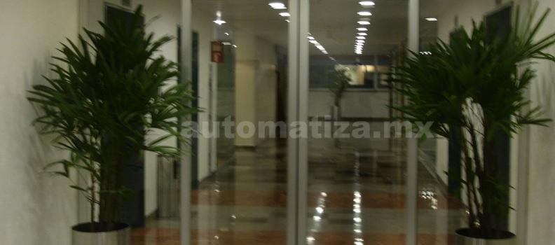 Puertas automáticas de cristal para negocios